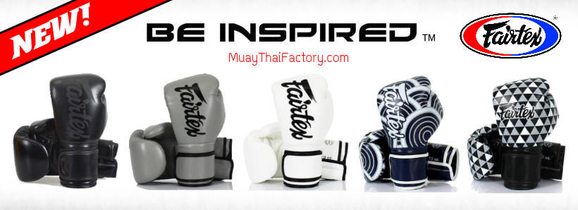 Fairtex Muay Thai gloves BGV14
